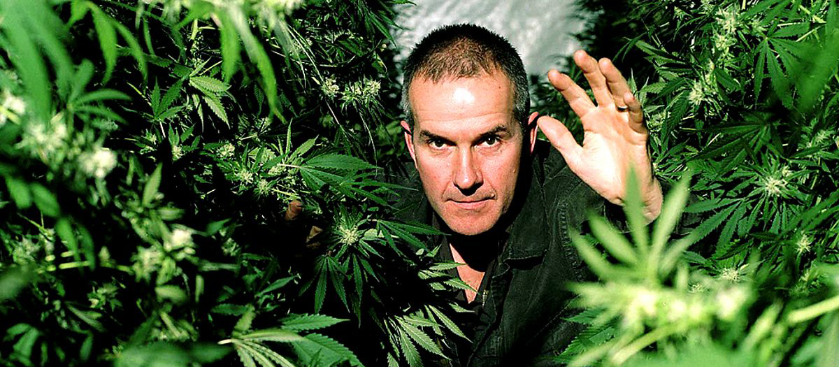 Bbc как марихуана торрент конопля евгения никитична