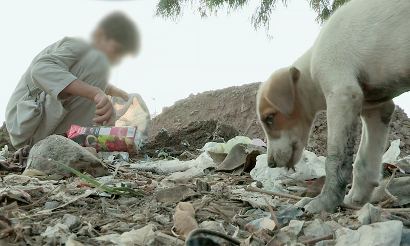A Pakistani boy searches in the garbage in the documentary Pakistan's Hidden Shame