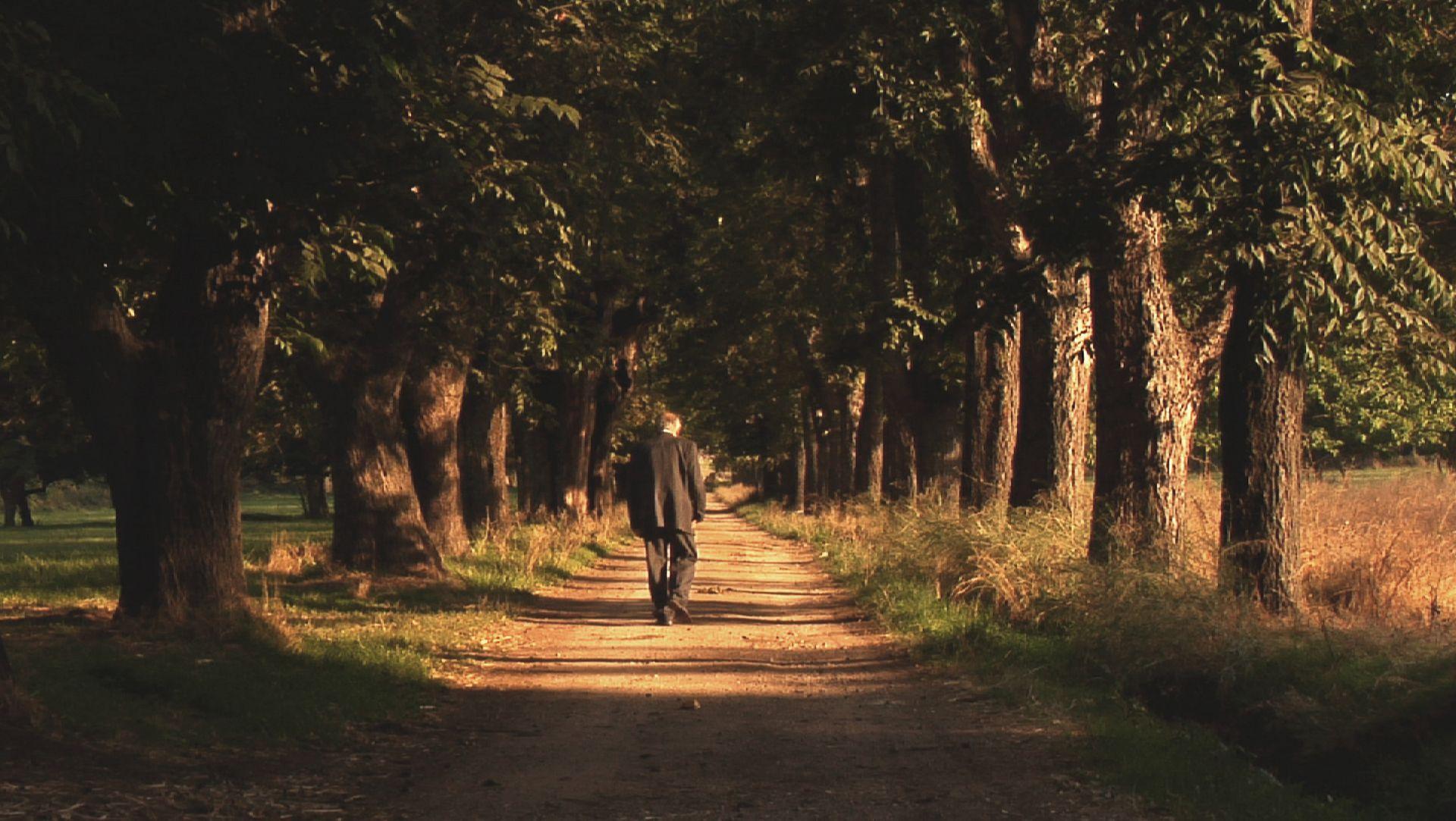 An old Armenian man walks in a forrest in Lebanon in the documentary 23 Kilometres