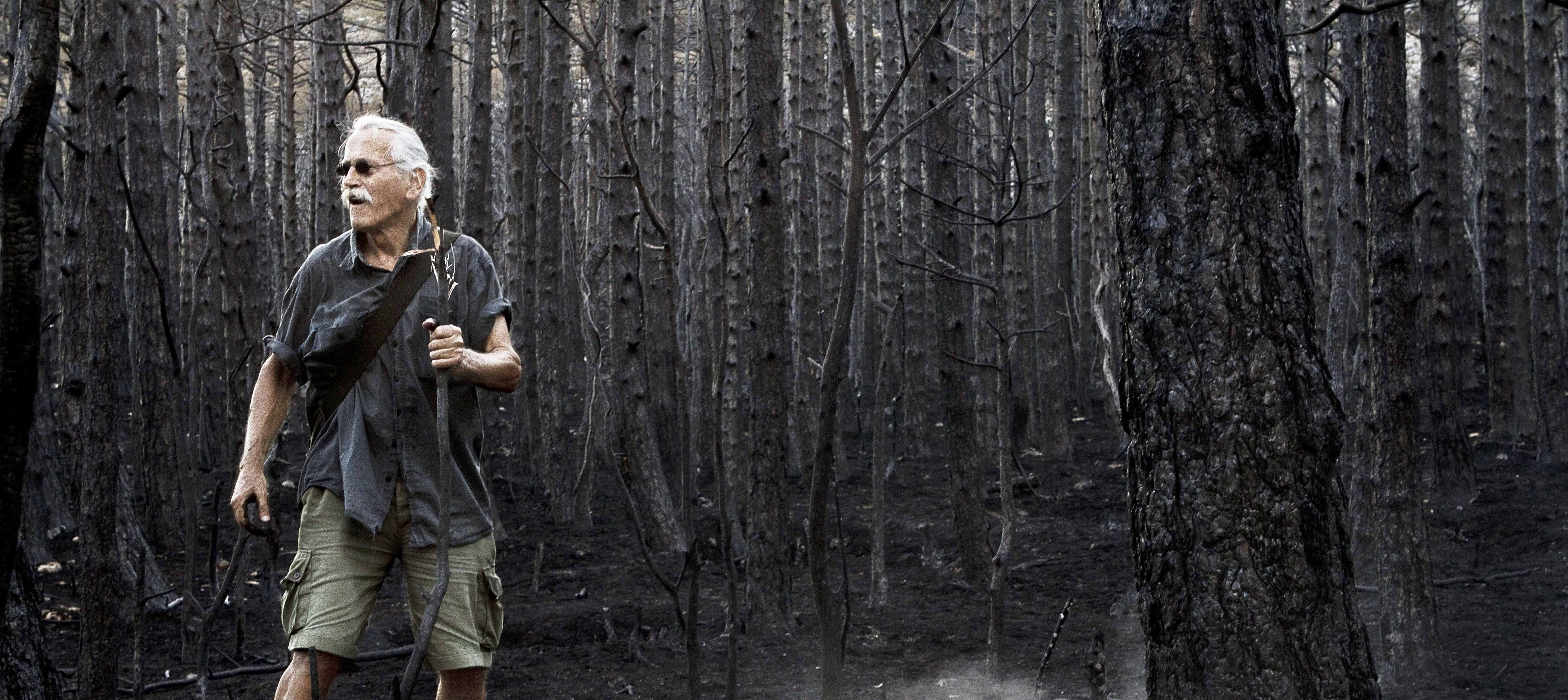 An artist moves through a forrest in the documentary Artist on vacation