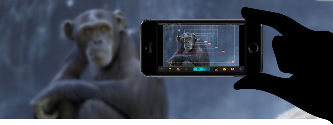 A filmmaker shoots a monkey with the app Artemis Director's viewfinder