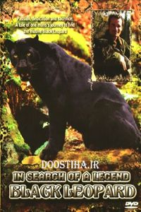 In Search Of A Legend: Black Leopard