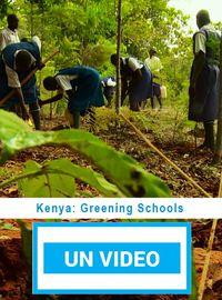 Kenya: Greening Schools
