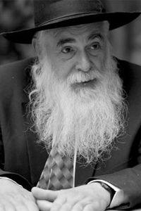 Eliyahu Rips: The Burning