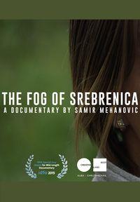 The Fog of Srebrenica