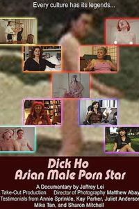 Dick Ho: Asian Male Porn Star