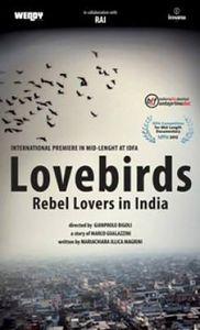 Lovebirds - Rebel Lovers in India